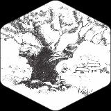 Drevo #3