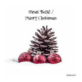 Vesel Božič / Merry Christmas