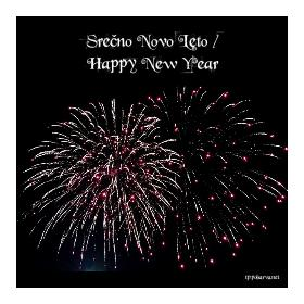 Srečno Novo Leto / Happy New Year
